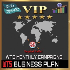 VIP WEB TRAFFIC MONTHLY CAMPAIGN - BUSINESS PLAN - 100K VISITORS / 2 URL