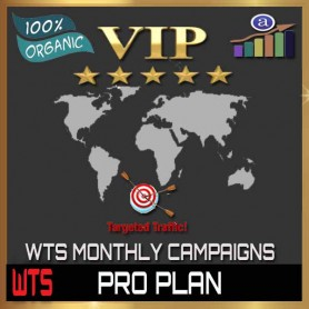 VIP WEB TRAFFIC MONTHLY CAMPAIGN - PRO PLAN - 100K VISITORS / 4 URL