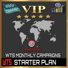 VIP WEB TRAFFIC MONTHLY CAMPAIGN - STARTER PLAN - 30K VISITORS